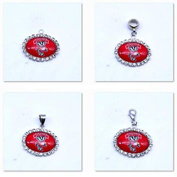 Pendant Charms Rhinestone NCAA Wisconsin Badgers Charms Basketball Sports Dangle Charms for Women Men Diy Jewelry Fashion 2017
