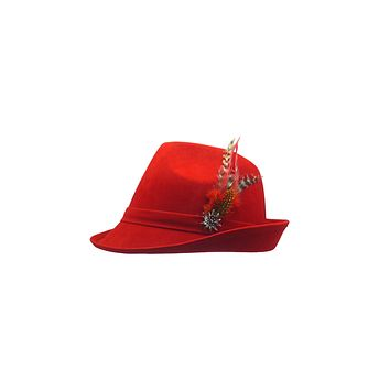 Germanic Hunter Red Hat Fedora And Edelweiss & Feather