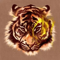 """Tiger"" - Art Print by Feline Zegers"