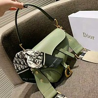 Dior Hot Sale Women Fashion Leather Handbag Shoulder Bag Crossbody Satchel Saddle Bag