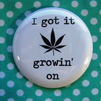 I got it growin on... -  2.25 inch pinback button badge