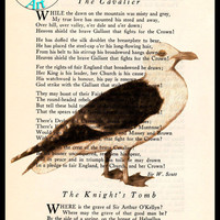 Brown Seagull Cave Drawing Beautifully Upcycled Vintage Dictionary Page Book Art Print, Bird Art Print
