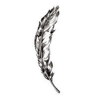 Sketched Feather