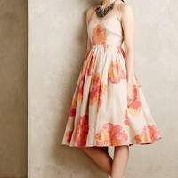 Blazing Hibiscus Dress by Tracy Reese Neutral Motif