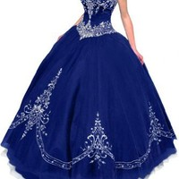 Gorgeous Bridal Retro Princess Strapless Tulle Ball Gown Quinceanera Dress