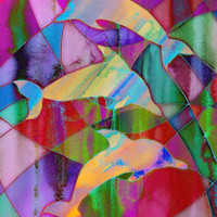 Caught in rainbow nets Art Print by micklyn