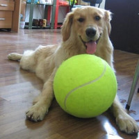 Dog Puppy Giant Tennis Ball Play Toy