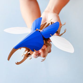 Model Hercules Beetle DIY Kit