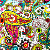 Fabric Wall Canvas Paisley Print /Colorful by AquaXpressions