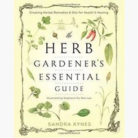 Herb Garden Essential Guide