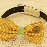 Mustard Dog Bow Tie collar, Pet accessory, Dog collar, Charm, Live, Love, Laugh, Dog birthday, wedding