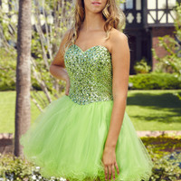 G2034 Jeweled Strapless Homecoming Cocktail Dress