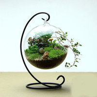 Clear Glass Round with 1 Hole Flower Plant Stand Hanging Vase Hydroponic Home Office Wedding Decor