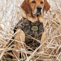 Cabela's 5mm Deluxe Neoprene Dog Vest