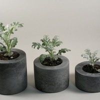 Round Concrete Pot  set of 3 by roughfusion on Etsy