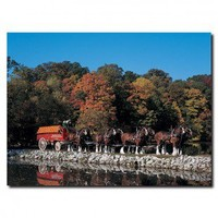 Lil' Rider Clydesdales in Fall By Stone Pond Canvas Art - AB266-C1824GG - All Wall Art - Wall Art & Coverings - Decor