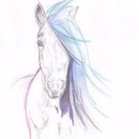 Sale - Buy 2 Get 1 Free Art Watercolor Painting  - Print   8x11 Animal Horse Home Decor Illustration  fuchsia purple blue pencil