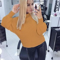 Yellow Plain High Neck Casual Pullover Sweater