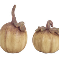 Falling Leaves Collection Natural Pumpkins (Set of 2)
