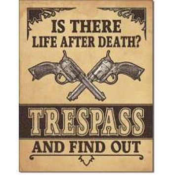 Tin Sign  IS THERE LIFE AFTER DEATH?