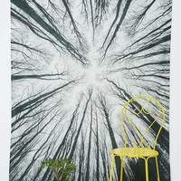 Trees From Below Tapestry - Urban Outfitters