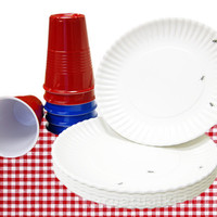 ALL AMERICAN NOT PAPER! PICNIC SET