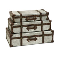 Theodric Galvanized Trunks - Set of 3