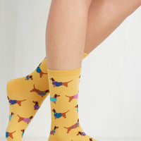 Quirky Gold Medal Wiener Dog Socks by ModCloth