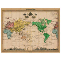 Planisphere World Map Decal