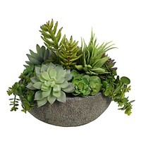 BLOOMS by Diane James Echeveria in Faux Stone Bowl