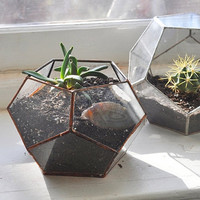 NEW Atlas Terrarium Planter Kit -- geodesic glass terrarium -- stained glass - copper or silver -- eco friendly