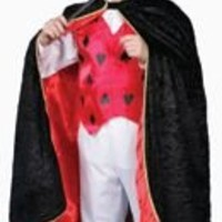 Deluxe Magician Dress up Costume Set - Toddler T4