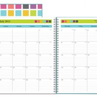 July 2015 - June 2016 Today's Teacher Clear Cover Squares Lesson Plan Book 8.5x11
