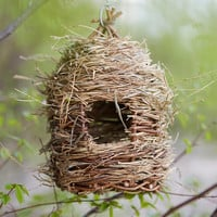 Willow & Grass Birdhouse