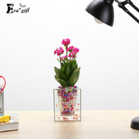 Automatic watering Transparent Acrylic Flower Pot with fish tank Planting holder Raising fish and flowers vase Gardening Planter