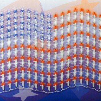 American Flag Twinkle Net Lights - Red, Blue And Frosted White Bulbs
