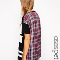 ASOS PETITE Exclusive Baseball Top With Check Back - Black