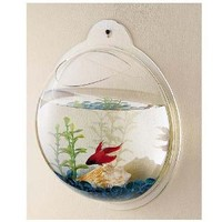 Fish Bubble - Wall Mounted Acrylic Fish Bowl