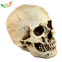 Halloween decoration Novelty toys Terrorist whimsy spoof industries moving the props Resin skulls