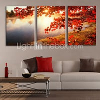 Stretched Canvas Print Art Landscape Tree by Lake Set of 3 - USD $ 48.99