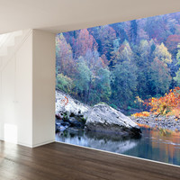 Paul Moore's Pedestal Rock in Big South Fork National Park Mural wall decal
