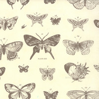 Papillon by 3 Sisters for Moda Fabrics, Butterflies, 407015