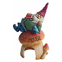 Park Avenue Collection Gnomes Frog House Garden Statue