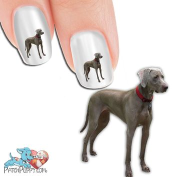 Weimaraner Standing Nail Art (NOW 50% MORE FREE)