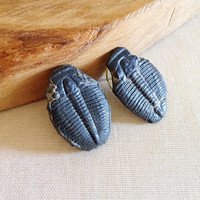 Vintage Handmade Trilobite Fossil Earrings