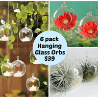 Set of 6 Round Glass Hanging Tealight Succulent Flower Vases
