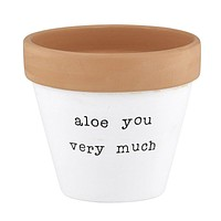 """ALOE You Very Much Clay Pot Planters 