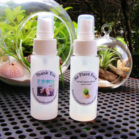 Combo Water Spray Bottle and Air Plant Food Spray Bottle for use with Airplants