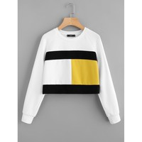 Color Block Raglan Sleeve Sweatshirt