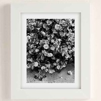Debbie Carlos Black And White Flowers Art Print